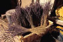 Dried lavender bunches for sale von Danita Delimont