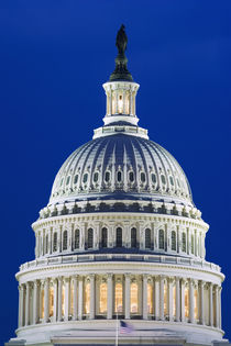 Close-up of the Capitol Building dome at night by Danita Delimont