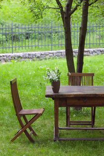 Spodnja Idrija: Table on Grounds of 14th Century Hotel Kendov Dvorec by Danita Delimont