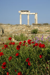 Column ruins von Danita Delimont