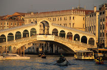 Canal Grande and Rialto Bridge by Danita Delimont