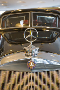 Detail of Mercedes star hood ornament von Danita Delimont