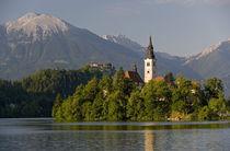Slovenia von Danita Delimont