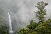 San Fernando Waterfall by Danita Delimont