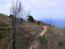 Monte Cofano by captainsilva