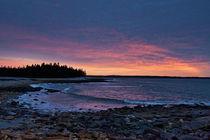 Acadia Sunrise by John Greim