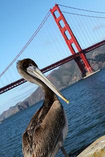 Golden Gate Bridge III by winterimages