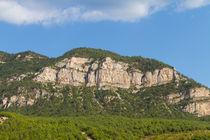 Mountain von Evren Kalinbacak