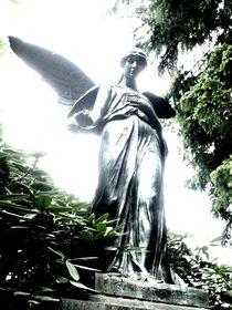 graveyard angel III von Oliver Metz