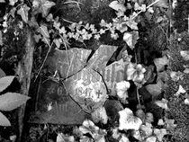 Graveyard-flakes-65