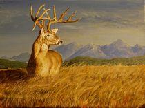 Wyoming Buck  by John  Tukey