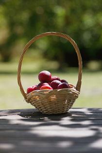 Summer Fruit Basket by Marcus Adams