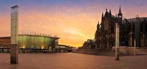 Cologne Dome von Raico Rosenberg