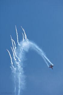 Aerobatics Sky show, 8567 von Stas Kalianov