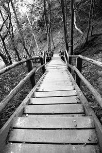 Holztreppe Rügen Königsstuhl Schwarz Weiß Bild von Falko Follert