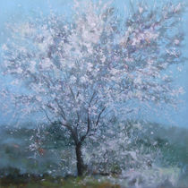 Spring tree with blossom towards Bet Zeit by Robert Selkirk