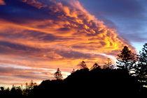 Dsc09088-25-11-2011-sonnenuntergang-ber-napier