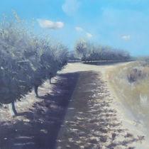Applegrove Sataf by Robert Selkirk