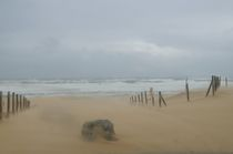 sand storm in Hossegore by Vsevolod  Vlasenko