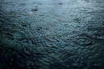 rain by Vsevolod  Vlasenko