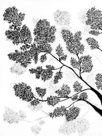 Tree von Jolanta  Bialecka