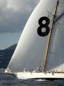 Saint-Tropez Regatta 8 by Lainie Wrightson