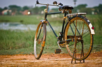 Bicycle-5046