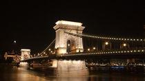 Bridge in Budapest by Victoria Savostianova