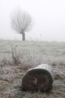 Kopfweiden bei Frost und Nebel 26 by Karina Baumgart