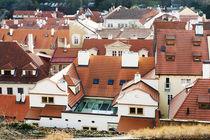Red roofs by Asya Kolokolova