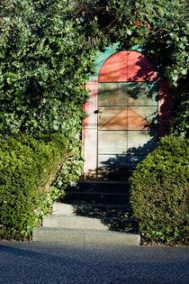 The door for Alice by Asya Kolokolova