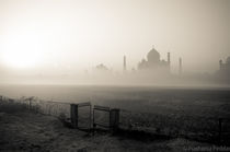 The Taj by Prashansa Poddar