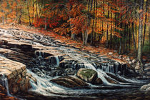 Autumn Cascade by Frank Wilson