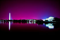 Washington-purple-ii