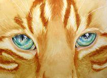 Feline Eyes:  Marmalade Tabby by lynne-hurd-bryant