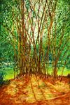 10-bamboo-grove-lal-bagh-copy