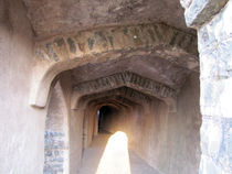 The ruins of history, mandu, india by AAYAM communication