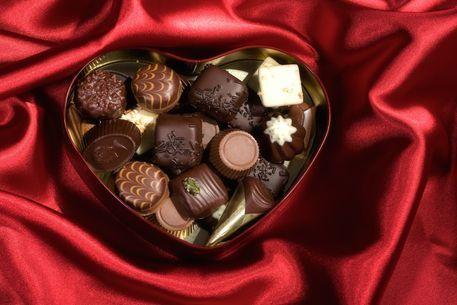 2009-01-23-chocolate16