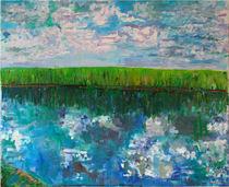 Zen of the Everglades by Zolita Sverdlove