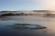 Misty morning at Yellowstone by Johan Elzenga
