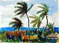 Palm Trees by Zolita Sverdlove