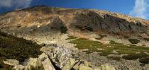 High Tatras panoramatic view von Tomas Gregor