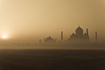 The Foggy Wonder by Samar Jha