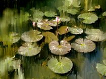 Lotus Pond 3 by Usha Shantharam