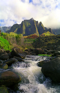 Kalalau Stream and Spires by Kevin W.  Smith