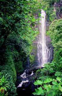 Wailua Falls Maui Hawaii by Kevin W.  Smith