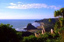 Piha-panorama-02150229