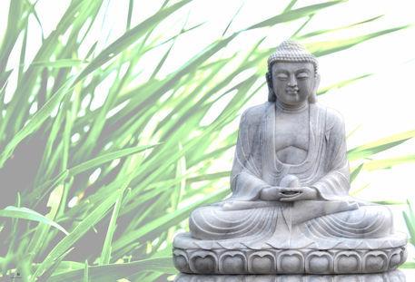 20111229-dsc-0154-edit-buddha-bokeh-gras