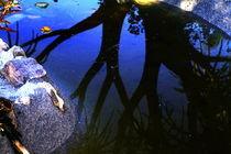 Wasserspiele von Susanne Brutscher