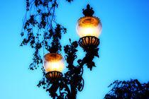 Lantern by Agnieszka  Grodzka